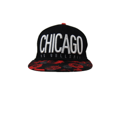 Casquette Chicago Cayler & Sons Cayler & Sons Bonnet/Chapeau 15,00 €